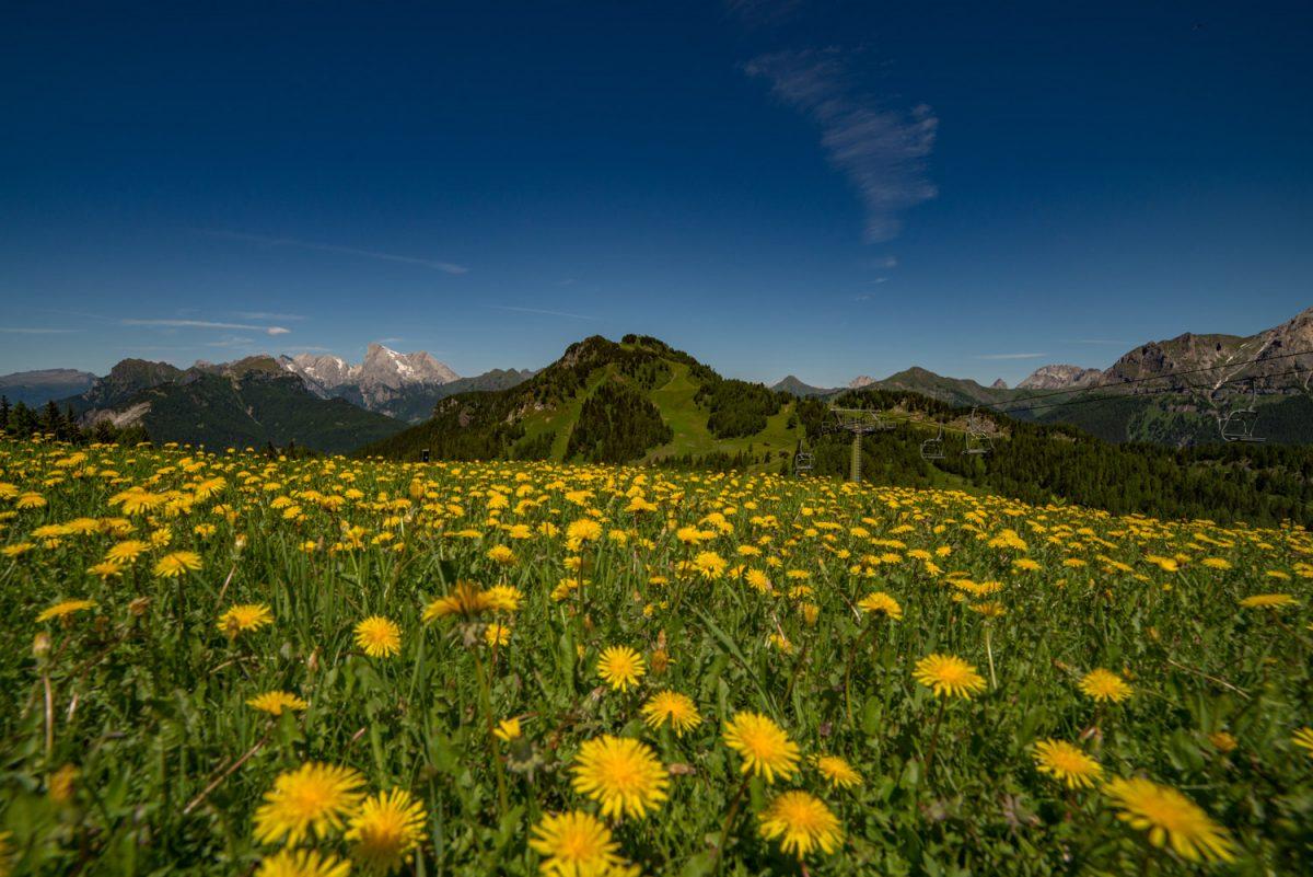 Alleghe.Dolomiti.summer-4