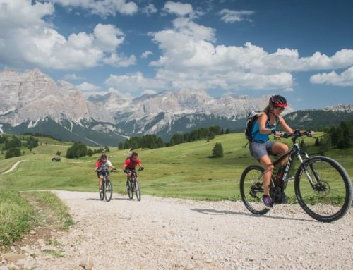 Con l'E-Bike, in bicicletta anche nelle salite più impegnative!
