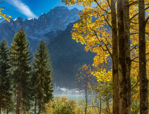 Foliage nelle Dolomiti