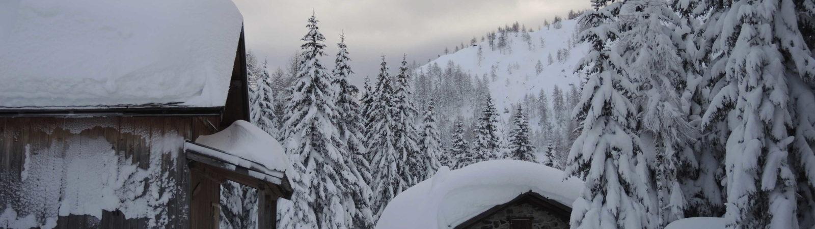 NEVICA! La magia della neve