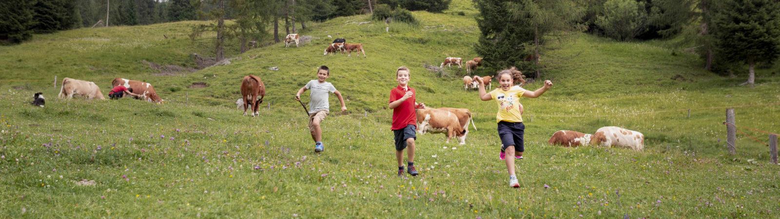 I bambini alla scoperta della montagna